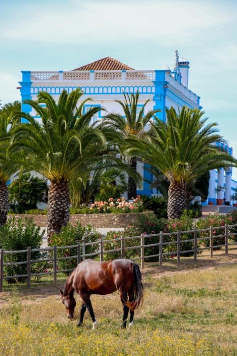 Herdade dos Grous, Alentejo (Portugal)