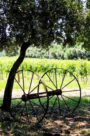 El pasado y el presente del vino en Villa Baulieu.