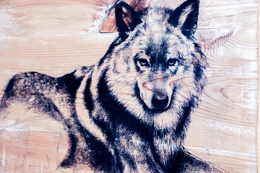 El lobo.