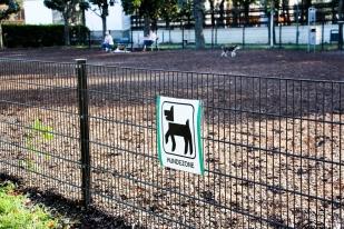 Reservado para perros, sin correa, en el Parque de los Héroes.