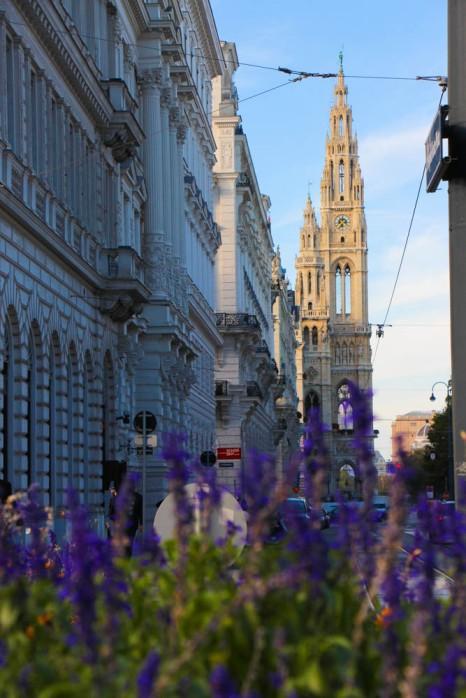 Al fondo de la calle, el Ayuntamiento de Viena.