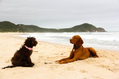 Rosa y Samito en una playa paradisíaca.