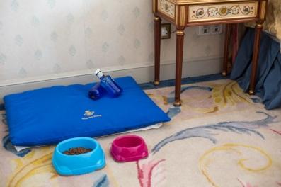 Los amenities para Eros, cama, agua mineral y comida.