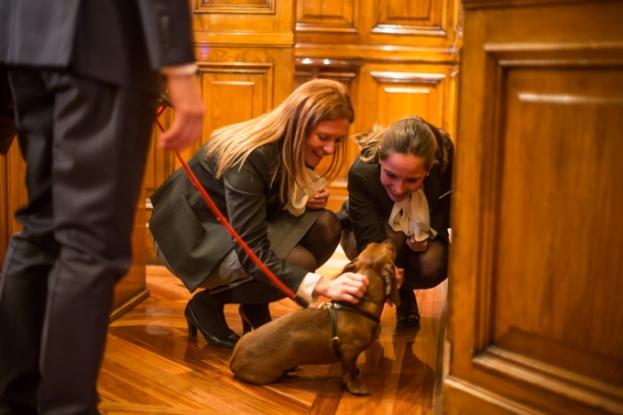 Cariñosa despedida de Sara Rubio y Lulia Boanca del equipo de recepción.