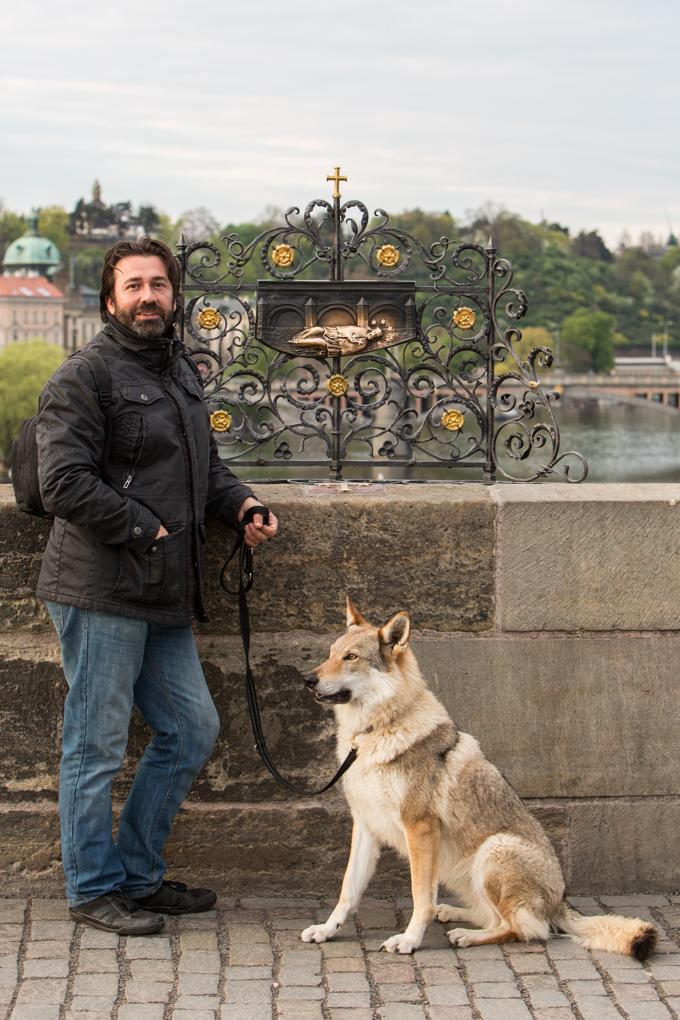 Perro lobo checoslovaco y junto al relieve de San Juan Nepomuceno.