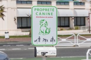 Simpáticos dispensadores de bolsas para los que tenemos perro.