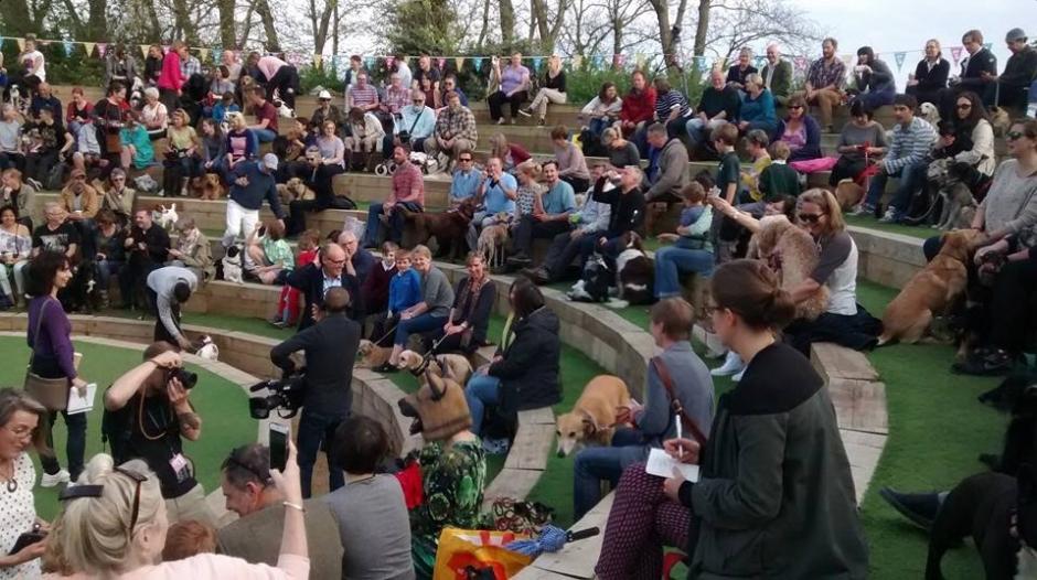 """Concierto """"Music for Dogs"""" de Laurie Anderson en el Brighton Festival."""