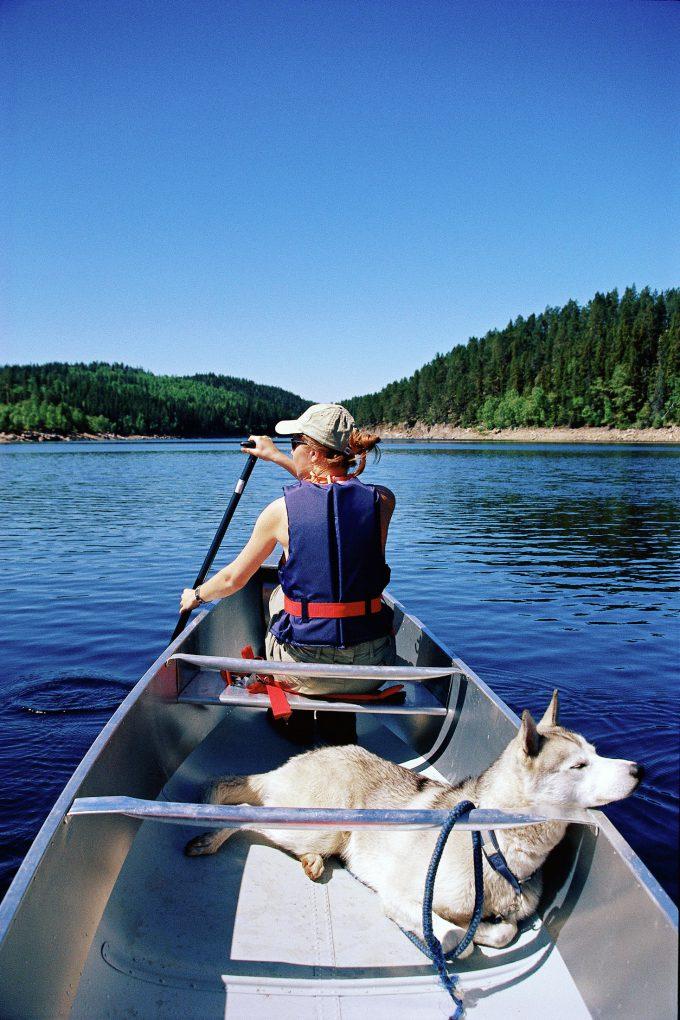 Excursión dog friendly en canoa por los Fiordos. Anders Gjengedal - Visitnorway.com.