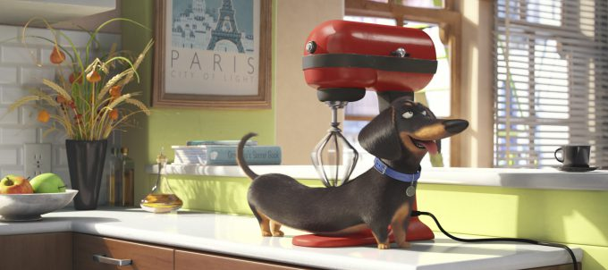 """Buddy, el teckel de """"Mascotas"""", disfrutando de un masaje con la batidora KitchenAid."""