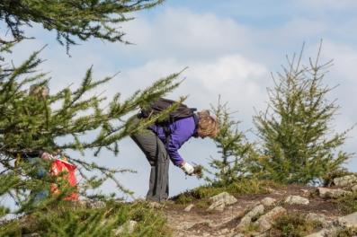 Las senderistas locales suelen coger hierbas Alpinas para hacerse un té medicinal.