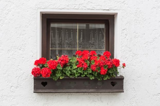 Balcón con de la misma casa.