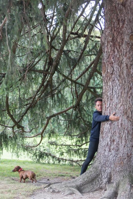 Abrazar un árbol tiene efectos beneficiosos para la salud física y mental.