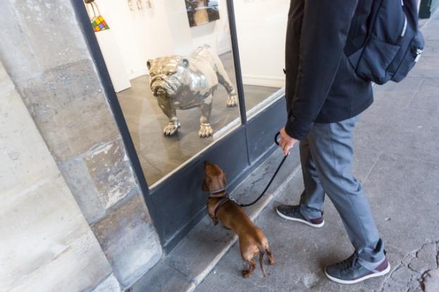 Primera toma de contacto con un perro gigante; como no huele, a Eros no le interesó la obra.