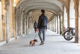 Recorriendo las galerías de arte de la Plaza de los Vosgos, la plaza monumental más antigua de París.